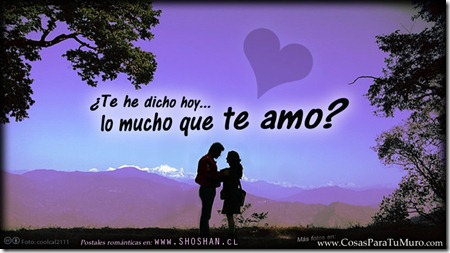 ¿Te he dicho hoy lo mucho que te amo?