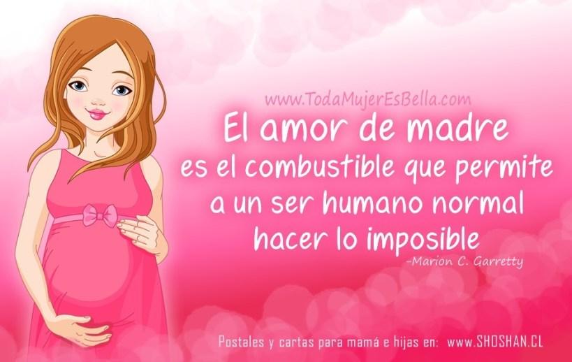 El amor de madre es el combustible que permite a un ser humano normal hacer lo imposible. -Marion C. Garretty
