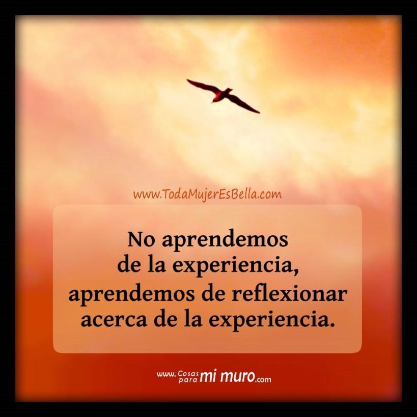 No aprendemos de la experiencia, aprendemos de reflexionar acerca de la experiencia.