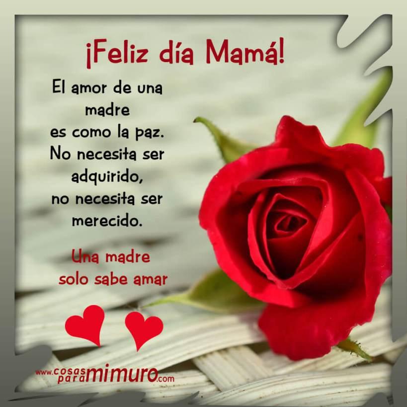 El amor de una madre es como la paz