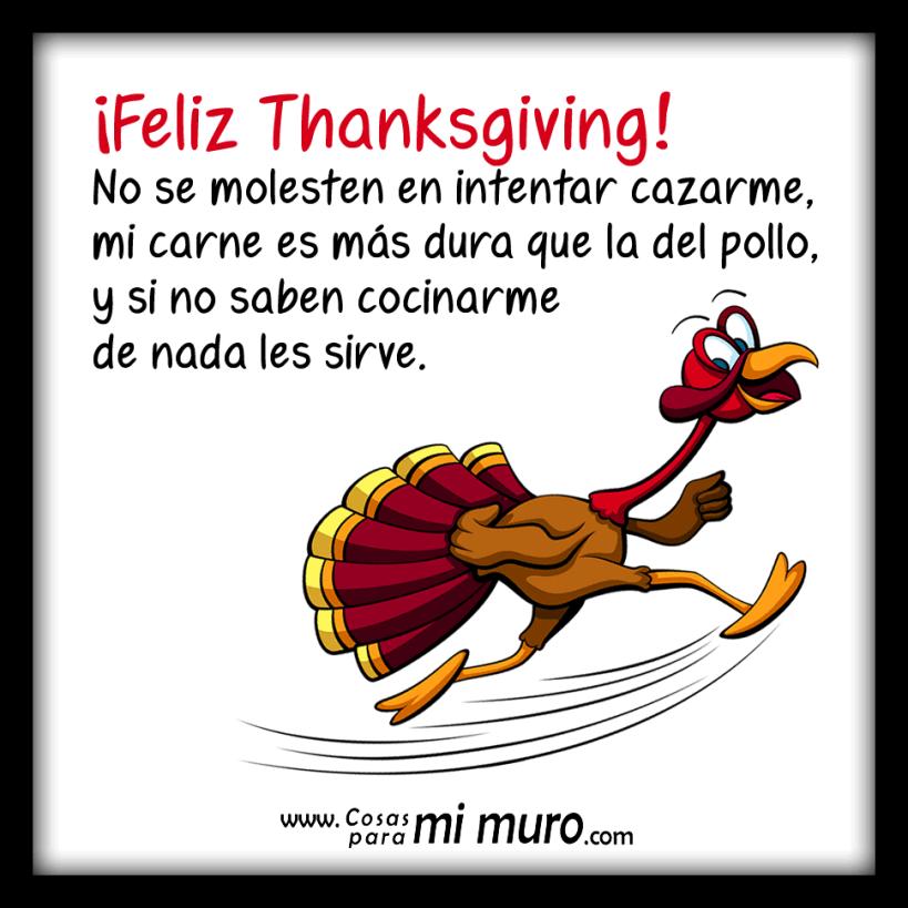 El pavo de Thanksgiving no quiere ser comido
