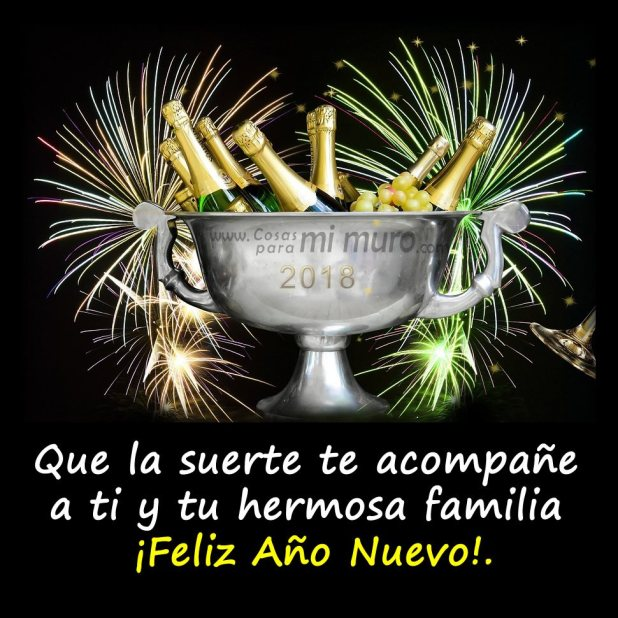 ¡Qué la fuerza te acompañe este nuevo año!