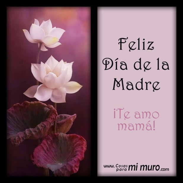Feliz Día de la Madre, ¡te amo mamá!