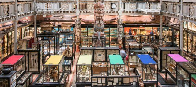 Foto de la página de Facebook del museo