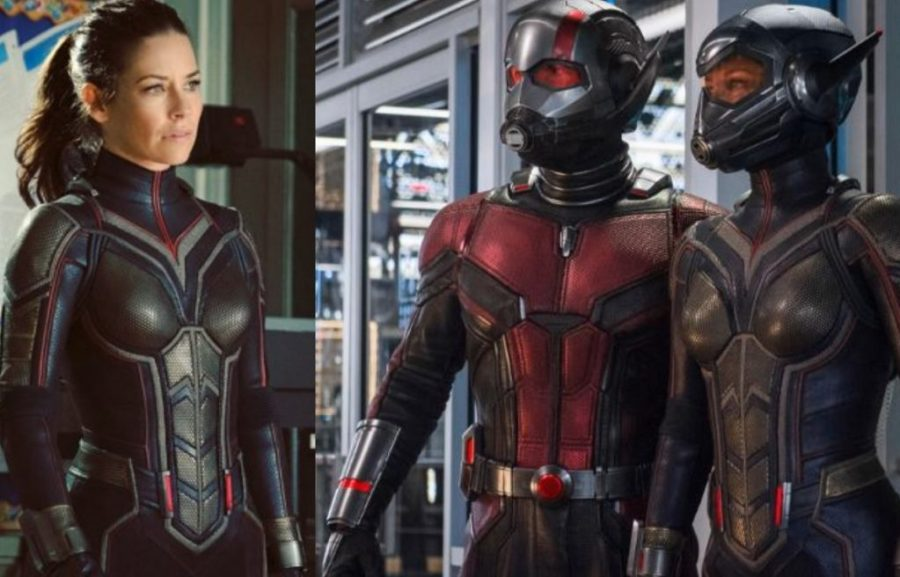 evangeline-lilly-ant-man-and-the-wasp