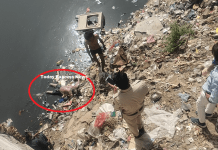 In Agra canal under Khedi police station, the body of a person was found in the canal, the police removed the body outside