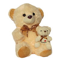 12 inc Baby with Mom Teddy