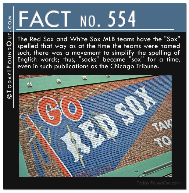 TIFO Quick Fact 554