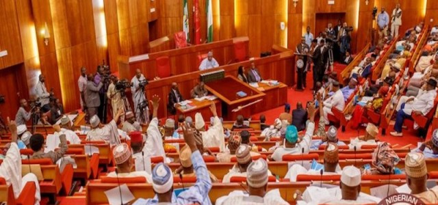 Senate passes latest version of Electoral Amendment Bill for third reading