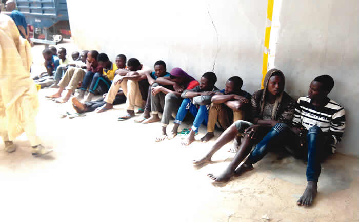 Police arrest 950 suspected political thugs in Kano
