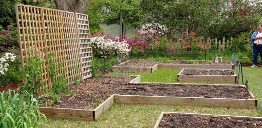 Above Ground Vegetable Garden Kits