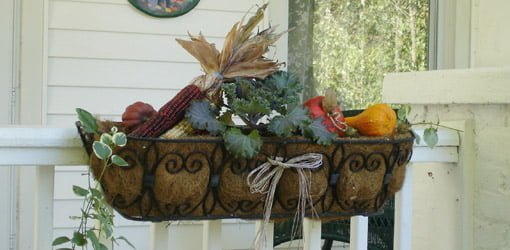 Fall planter window box