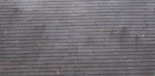 How to Clean a Roof to Remove Black Algae Stains – Cleaning Roof Shingles