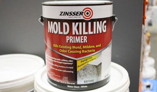 Zinsser Mold Killing Paint Primer Todays Homeowner Page - Painting over mildew in bathroom