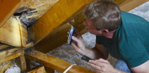 Solving Home Mold And Moisture Problems Todays Homeowner