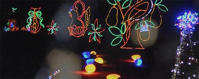 Mega Cavern Christmas Lights.Cranberry Orange Smash