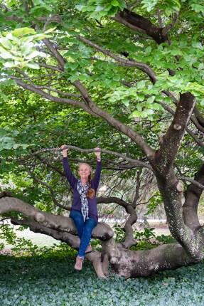 Healing the Air: Cindi Sullivan