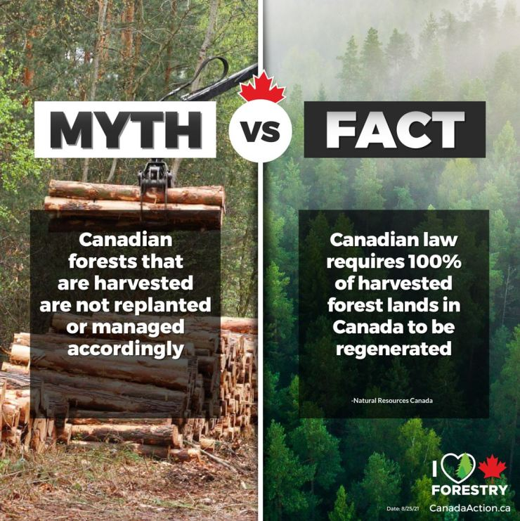 Canadian Forestry Myths vs Facts 1