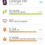Fitbit Registro de actividad
