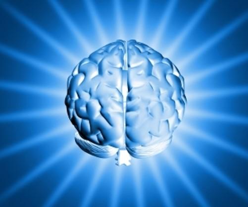 activar el cerebro