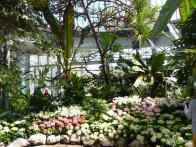 Easter Flower Show, Allan Gardens Conservatory