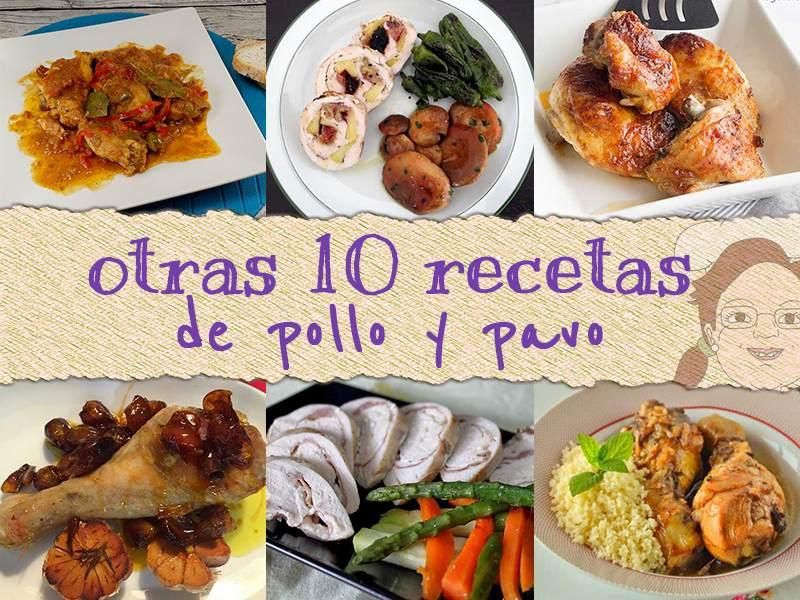 10 recetas de pollo y pavo 2