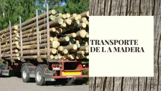 transporte-de-la-madera-miniatura