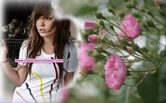 Fotomontaje De Flores Rosadas