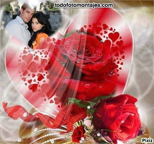 Fotomontaje Con Hermosas Rosas Rojas