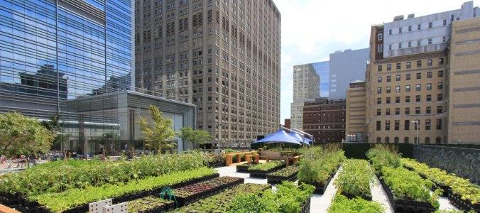 agricultura urbana definicion
