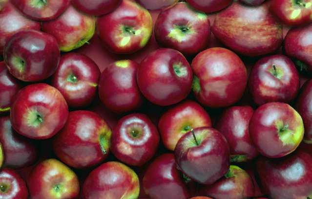 Datos curiosos sobre las manzanas