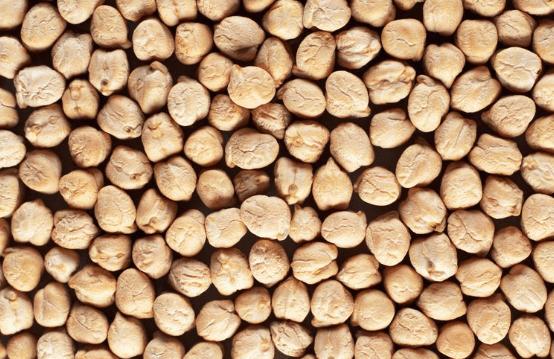 Usos de beneficios de los frijoles secos