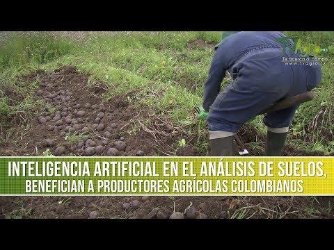 Análisis de Suelos Benefician a Productores Agrícolas