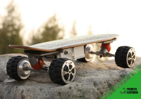 Skates y longboards