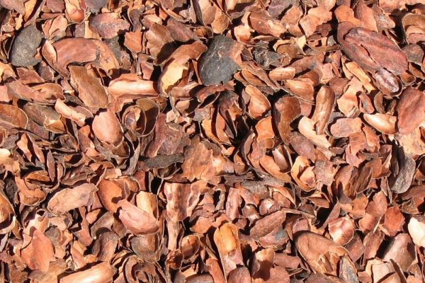 Cascarilla de cacao