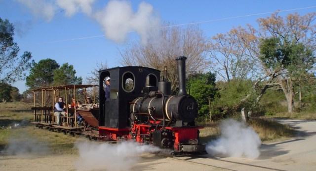 Paseo en locomotora a vapor