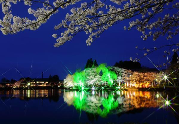 入選 「煌めく春の湖畔」小椋幸子
