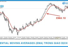 Exponential Moving Average (EMA) và Ứng dụng EMA trong giao dịch Forex
