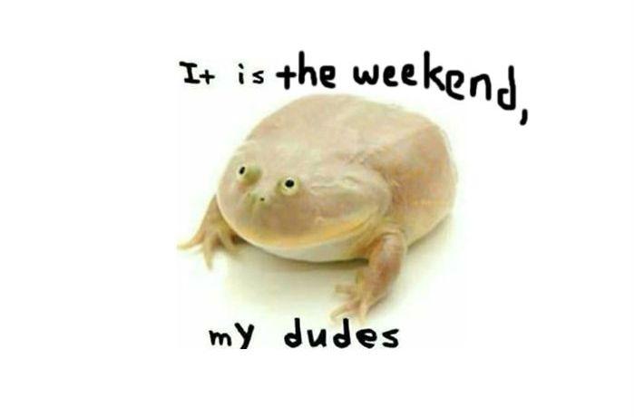 Weekend My Dudes
