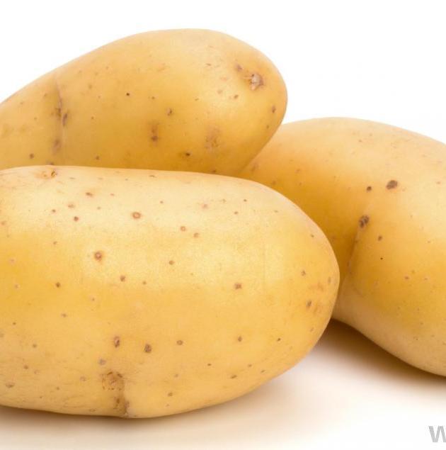 potato-08