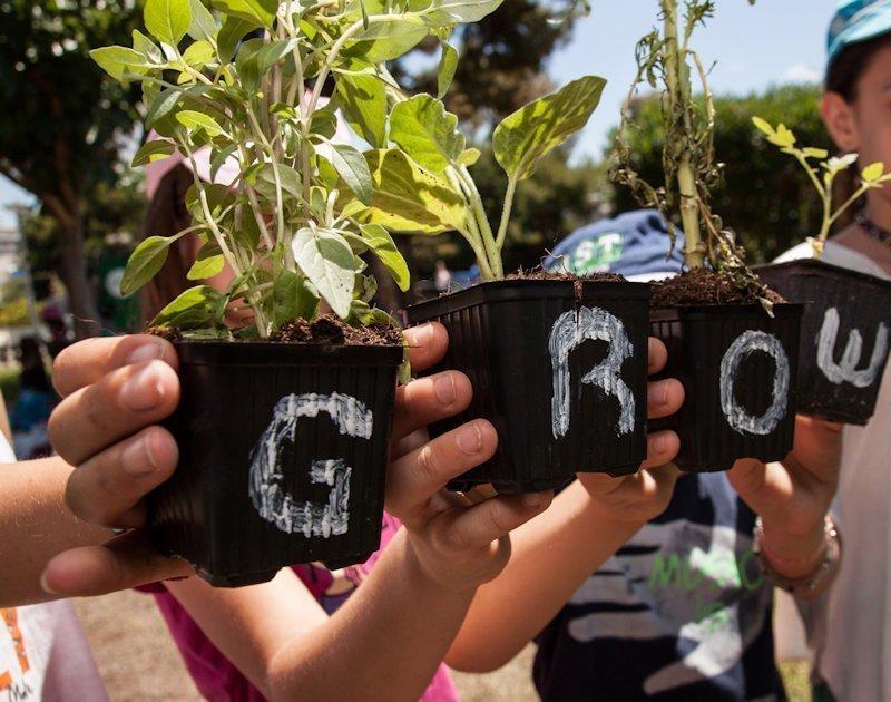 Θέλετε τα παιδιά σας να γίνουν μικροί κηπουροί;