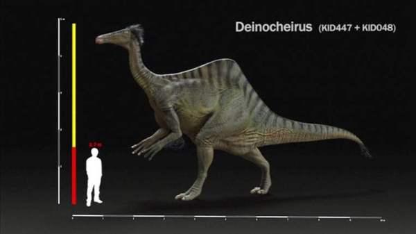 dinosaur-1-762x428