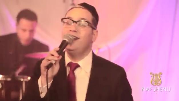 דוד גבאי - המה