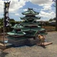 Dog Castle – The Coolest Dog House in Japan