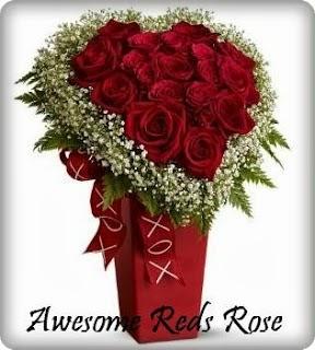 Rose in vase