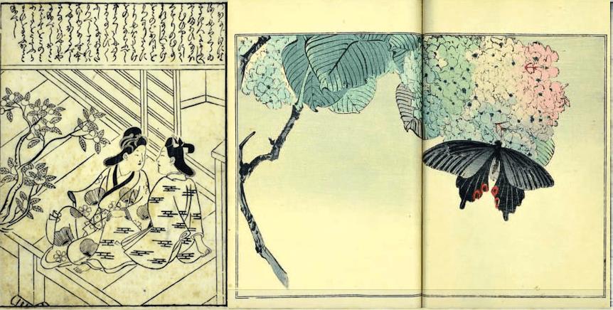 (1) Hishikawa MORONOBU, Lovers on the Veranda, c.1650, (2) Watanabe SEITEI, Seitei Kacho Gofu (Seitei's Bird and Flower Album) 1916