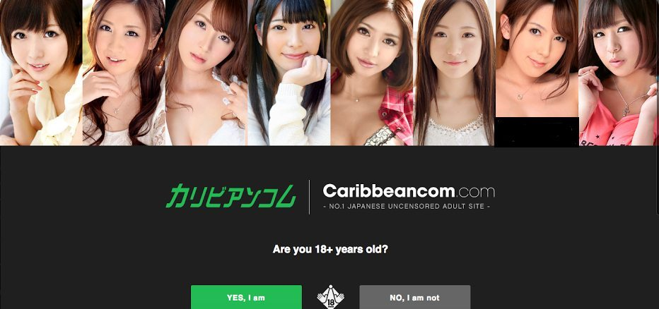 Tokyo police have arrested an American national in the upload of content deemed obscene to the site Caribbeancom.com
