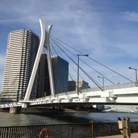 中央大橋全景