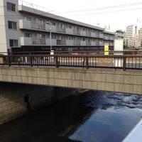 戸田平橋全景