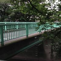 三島橋全景